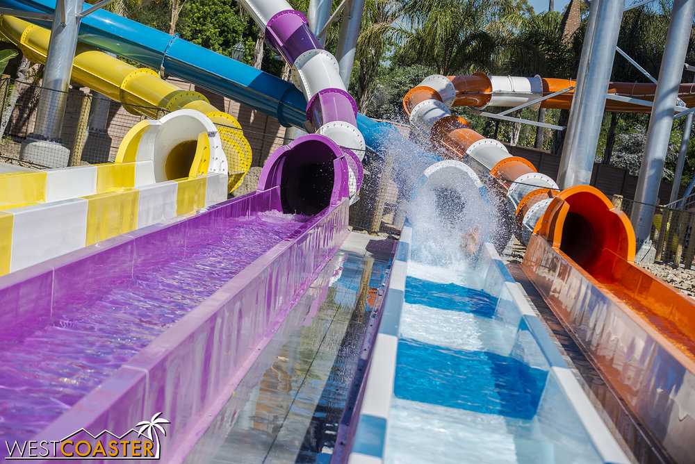 Multiple people reported the countdown as the most harrowing part, but everyone seemed to love these new slides!
