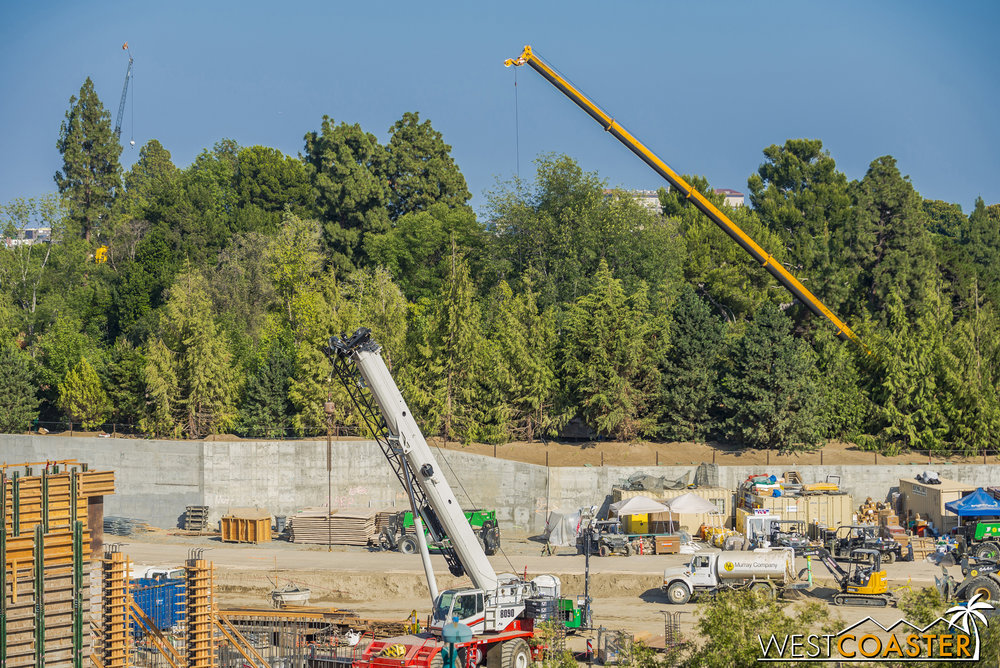 Another crane along the Critter Country side of the Rivers of America has appeared.