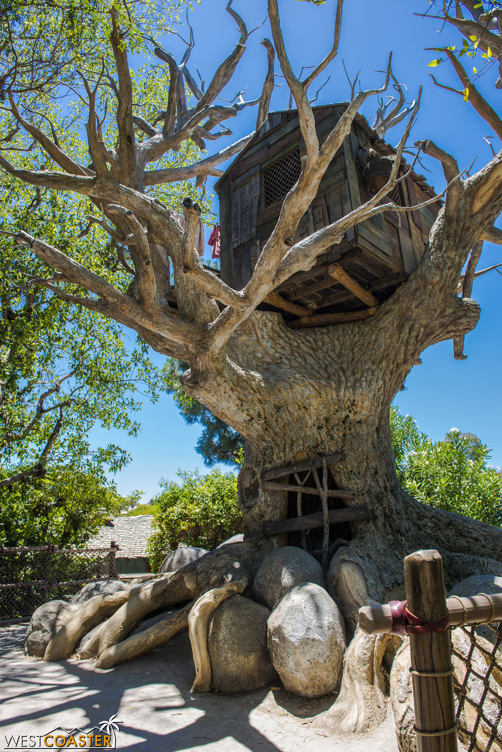 Climbing up the hill behind Lafitte's Tavern gets us to this treehouse.