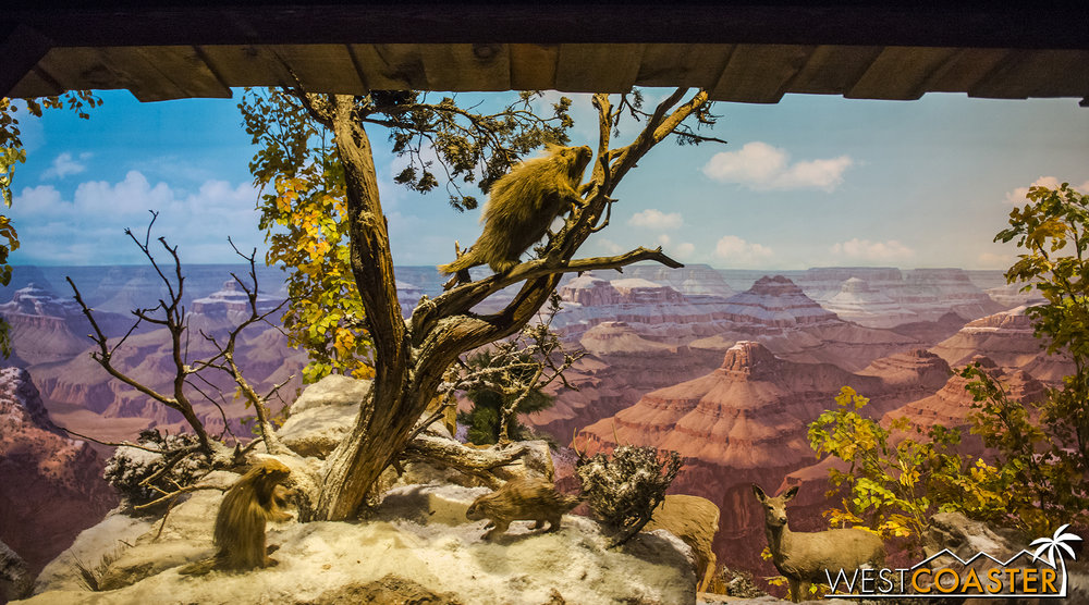 It's an adorable look at the wildlife of the Grand Canyon in the romantic feel of Disney's True Life Adventures series.