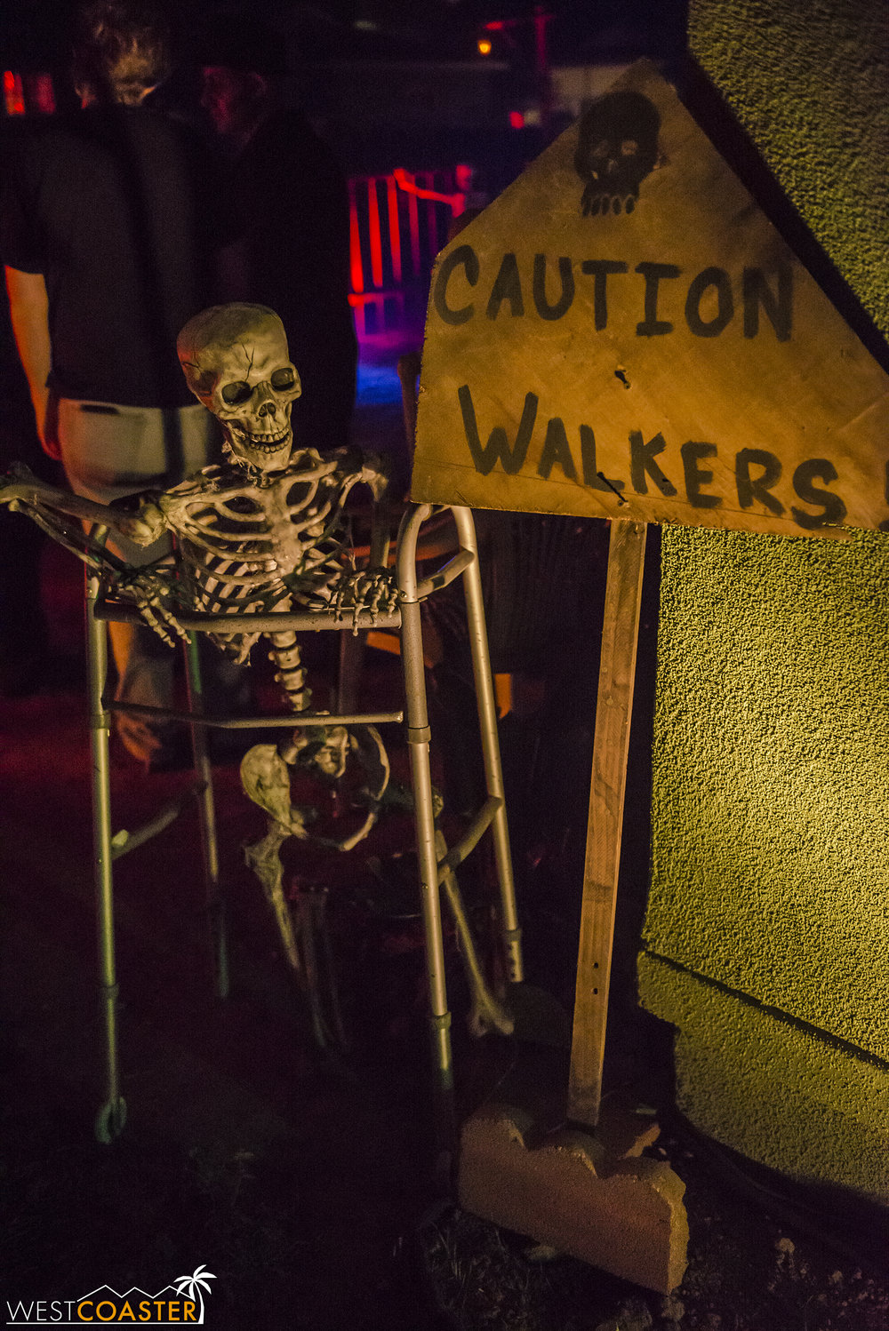 This is probably the best gag I've seen at a home haunt. Punny and silly, but expressive of the vibe of this haunt.
