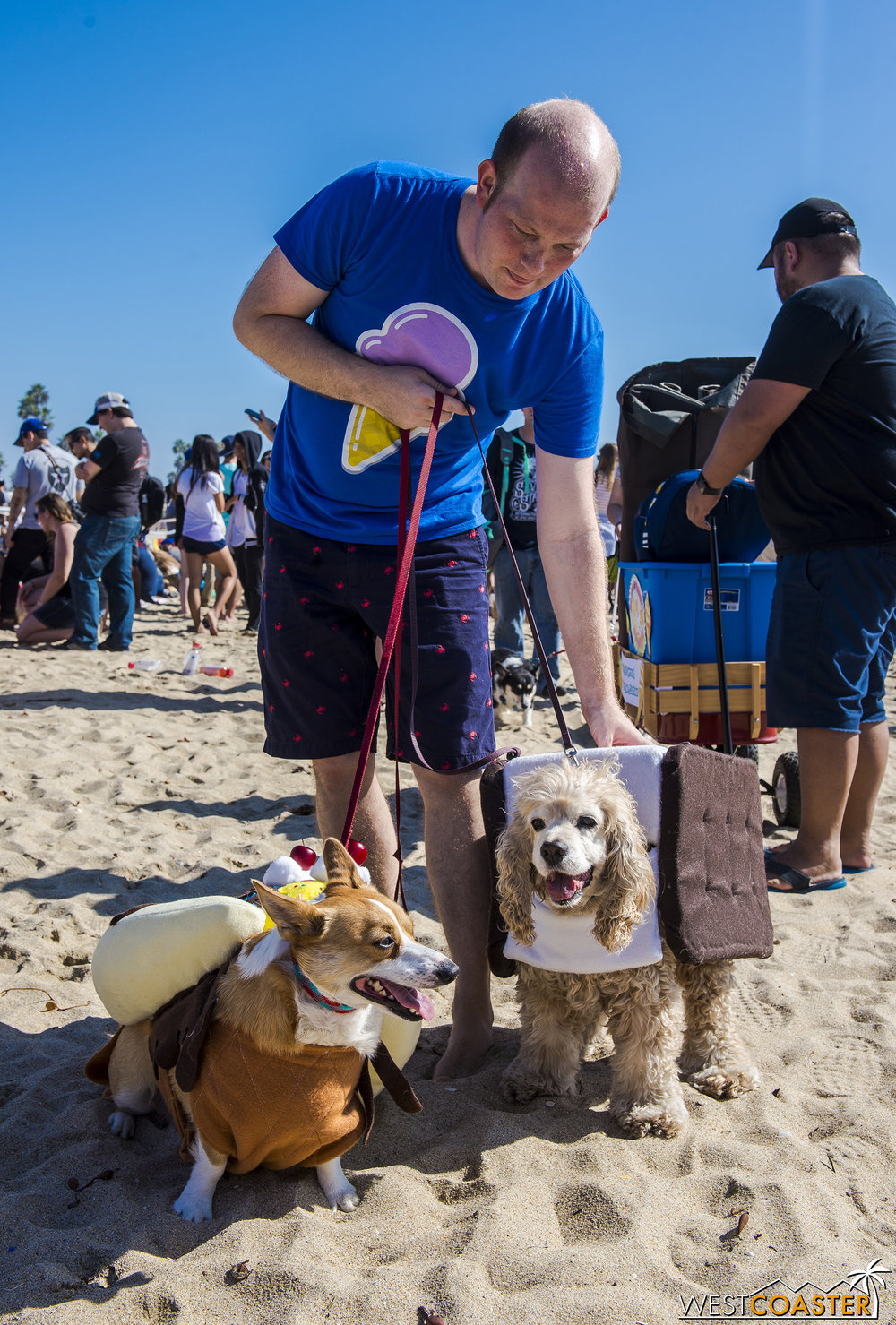 Some of the costumes were elaborate and home-made!  Kudos to the dog owners for their love and commitment to their pups.