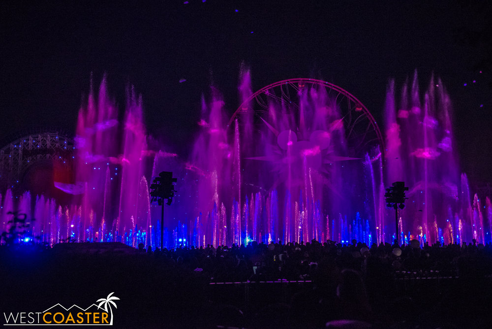 DLR-17_1129-G-WorldOfColor-0020.jpg
