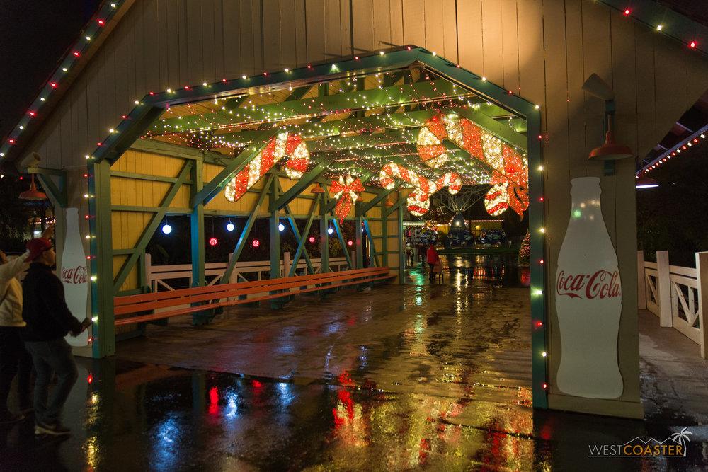 CGA Winterfest-24.jpg