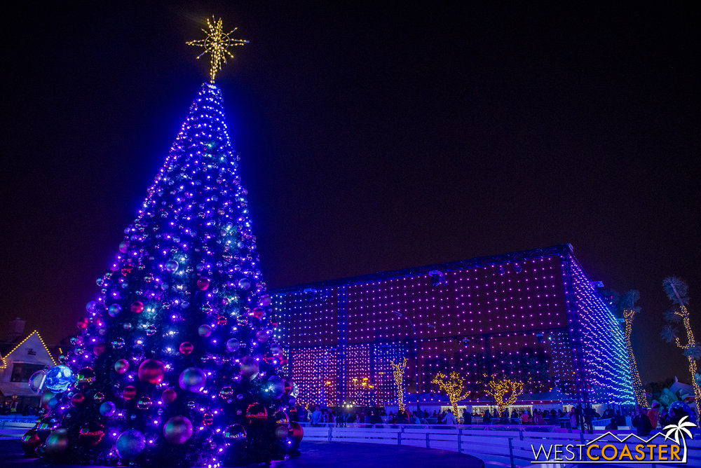Chill-17_1215-Show-TreeLighting-0014.jpg