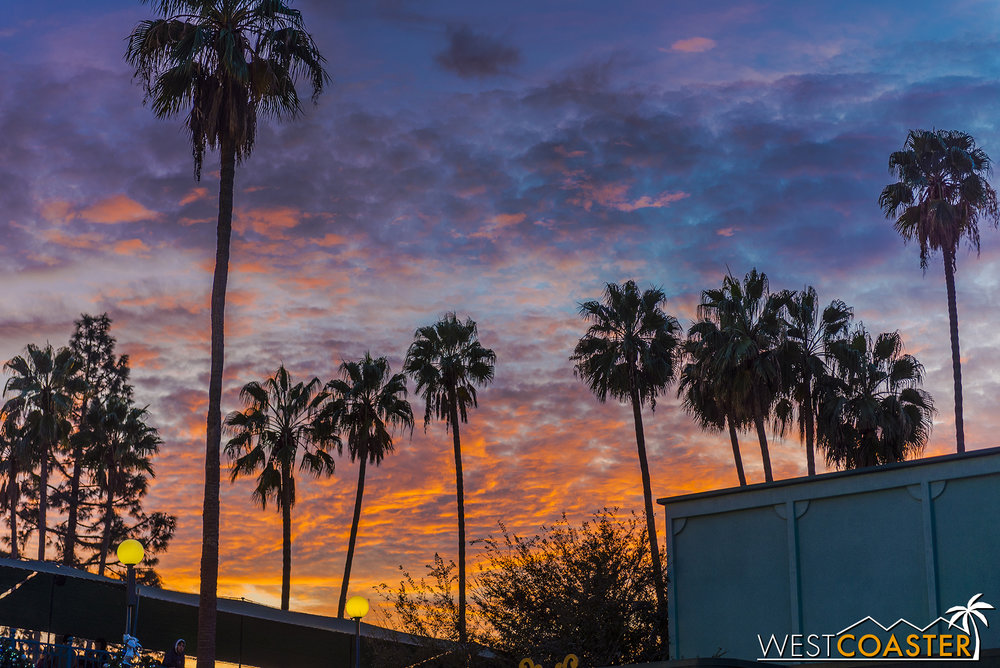 You don't get much more Southern California than pretty skies and palm tree silhouettes.