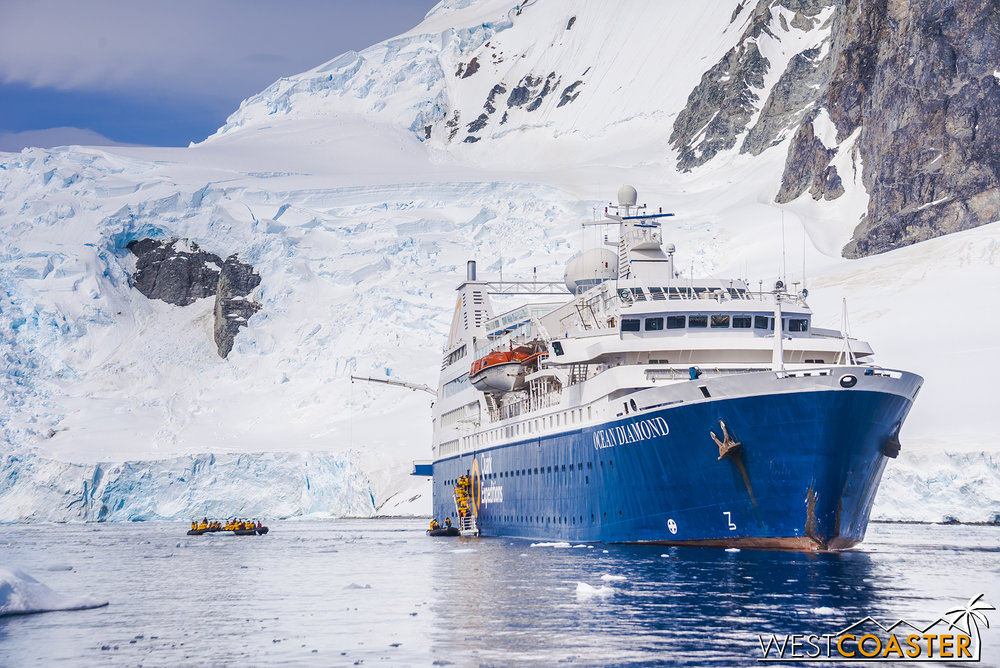 The ship, anchored in one of the many Antarctic bays we visited.