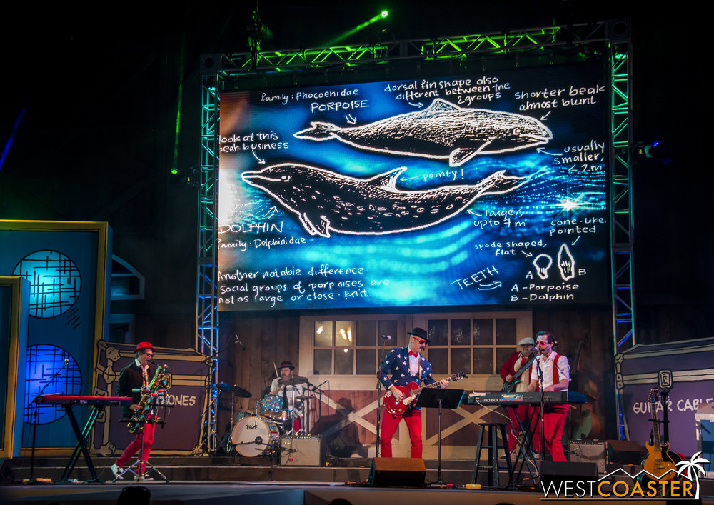 Their songs are fun and often non-sensical, such as this one highlighting the differences between dolphins and porpoises.