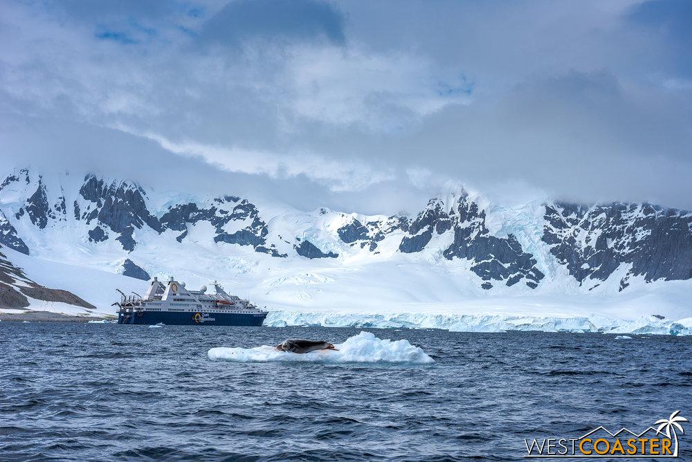 Antarctica-18_0207-0014.jpg