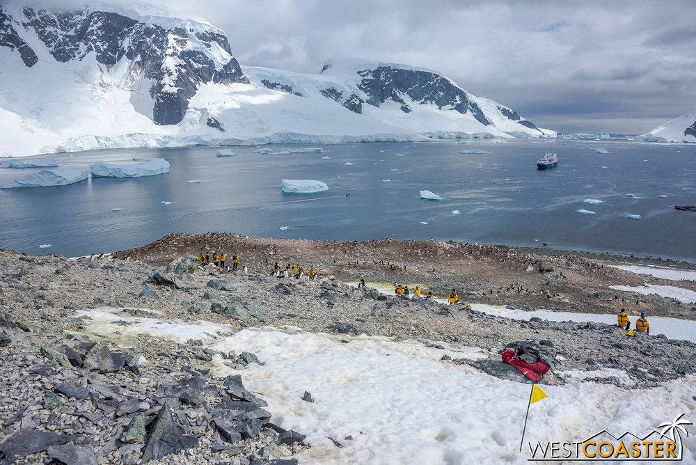 Antarctica-18_0207-0056.jpg