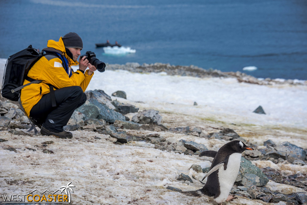 Antarctica-18_0207-0067.jpg
