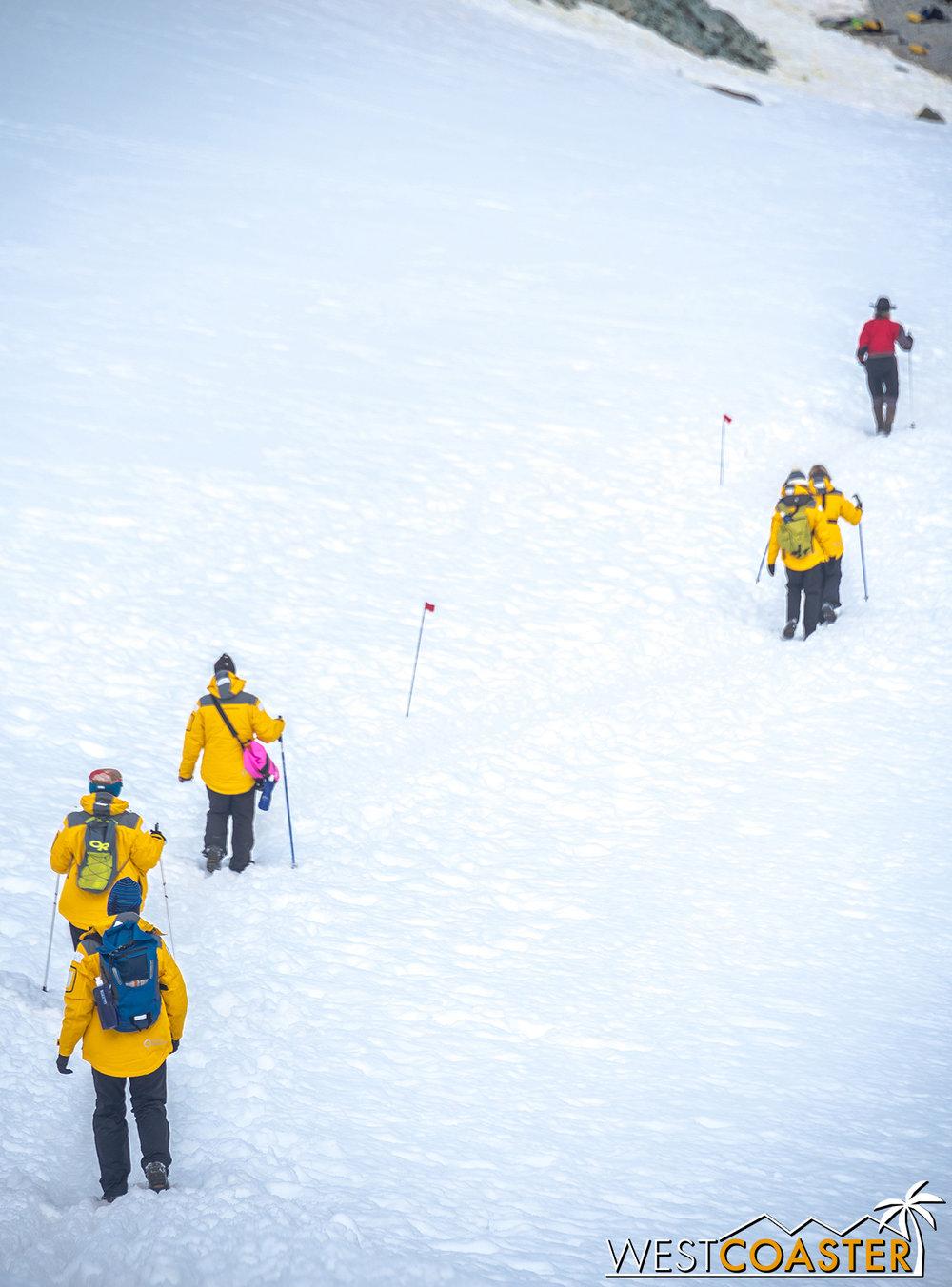 Antarctica-18_0207-0068.jpg