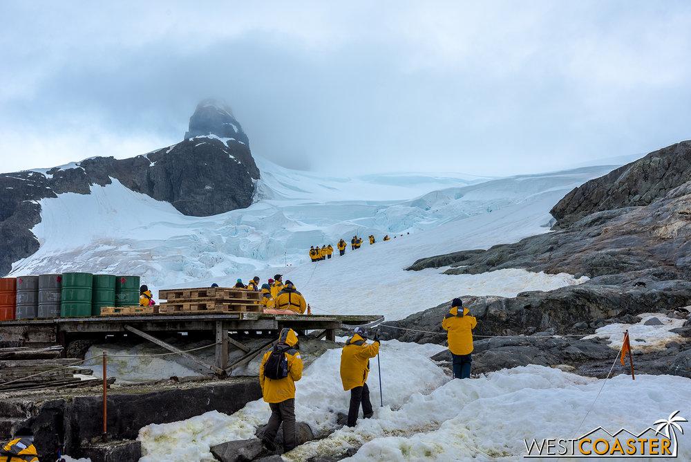 Antarctica-18_0222-0006.jpg