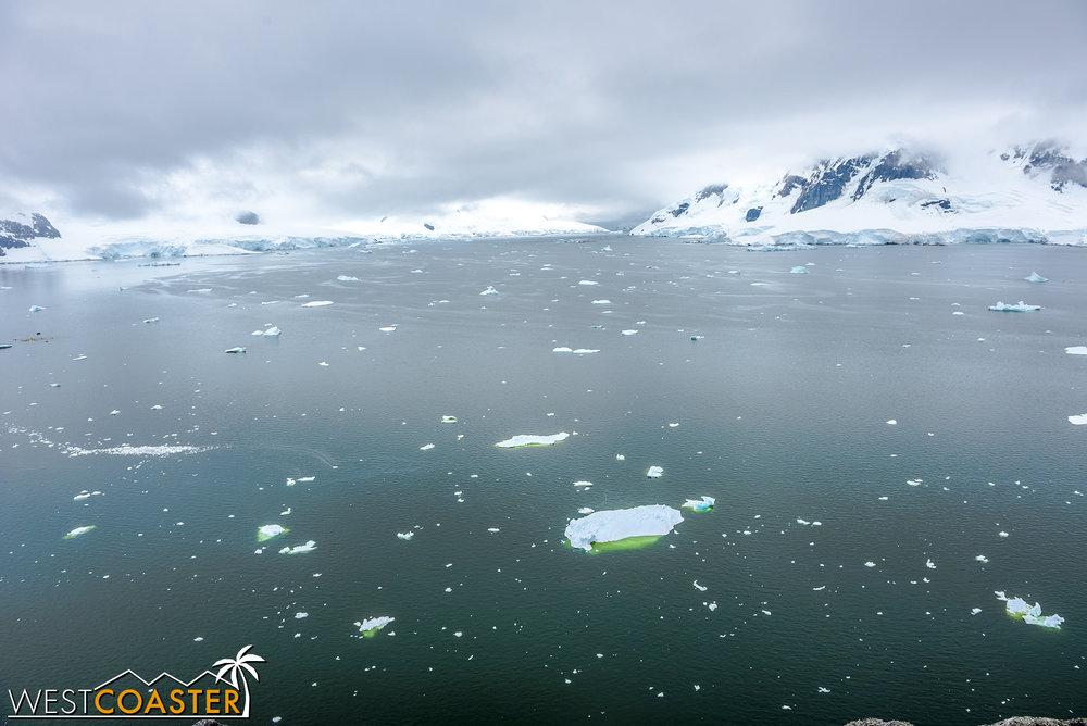 Antarctica-18_0222-0012.jpg
