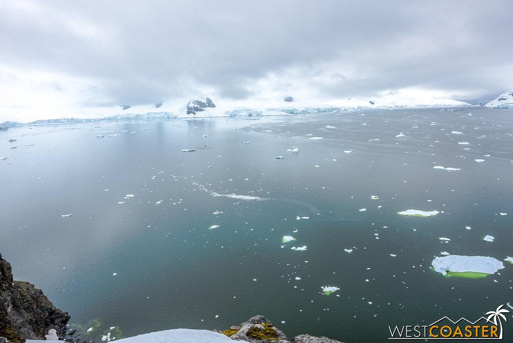 Antarctica-18_0222-0013.jpg