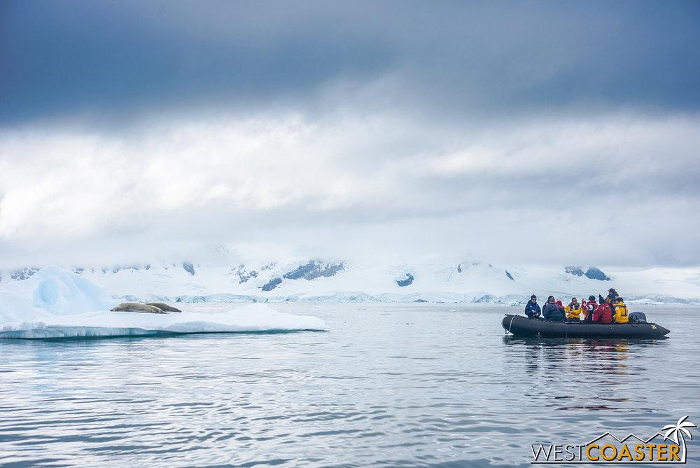 Antarctica-18_0222-0045.jpg