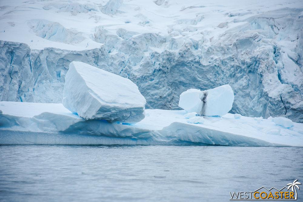 Antarctica-18_0314-0013.jpg