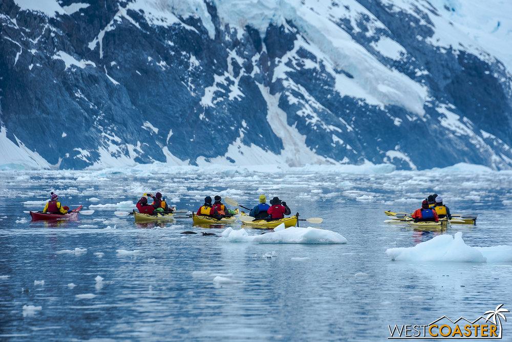 Antarctica-18_0314-0030.jpg