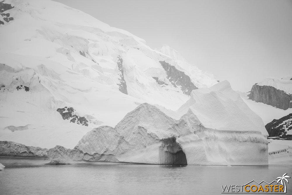 Antarctica-18_0606-A-Whales-0002.jpg