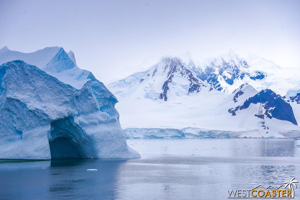 Antarctica-18_0606-A-Whales-0017.jpg