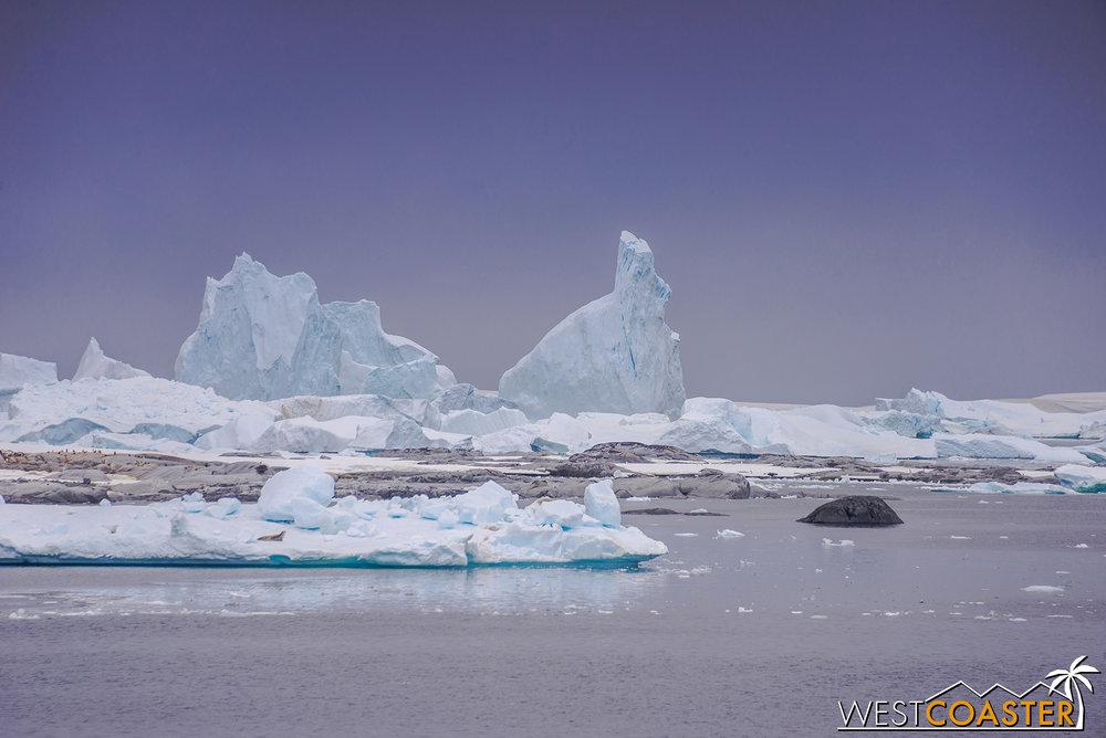 Antarctica-18_0609-0001.jpg