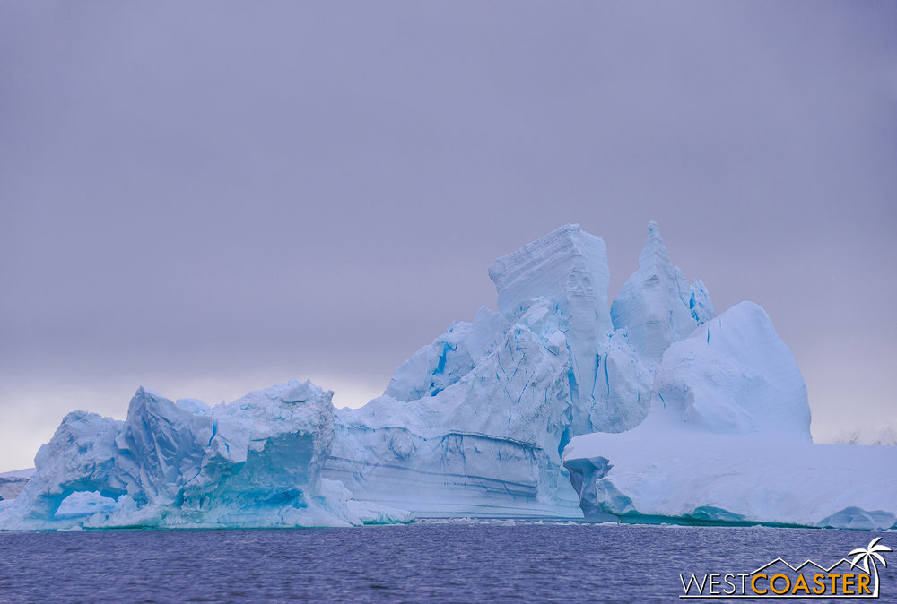 Antarctica-18_0609-0043.jpg