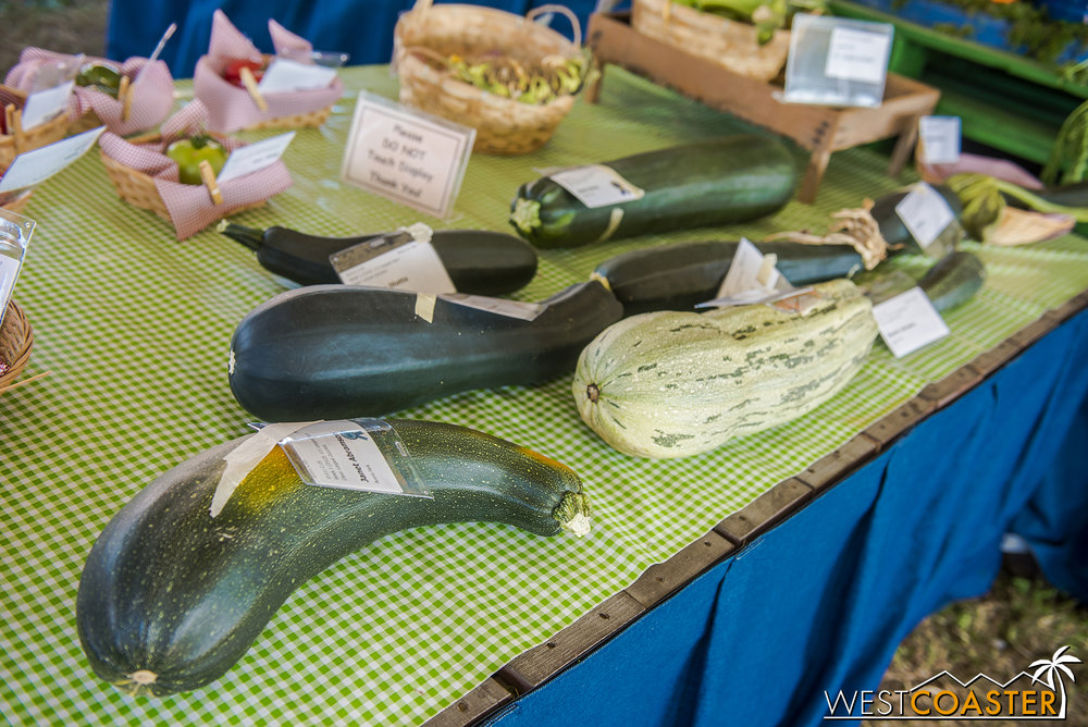 Biggest zucchini?  Check.