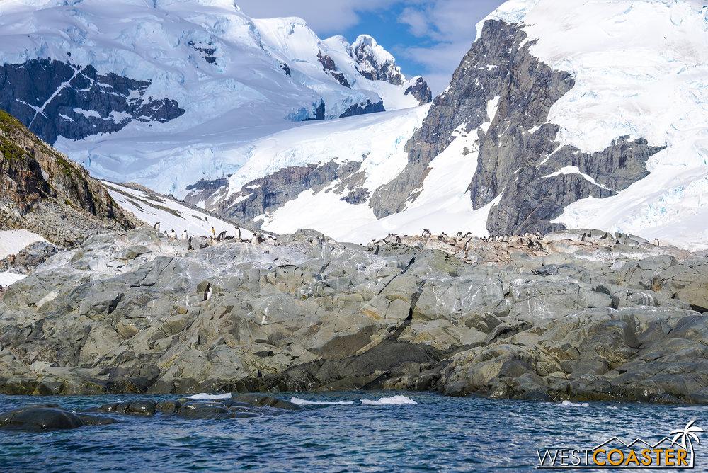 Antarctica-18_0726-0025.jpg