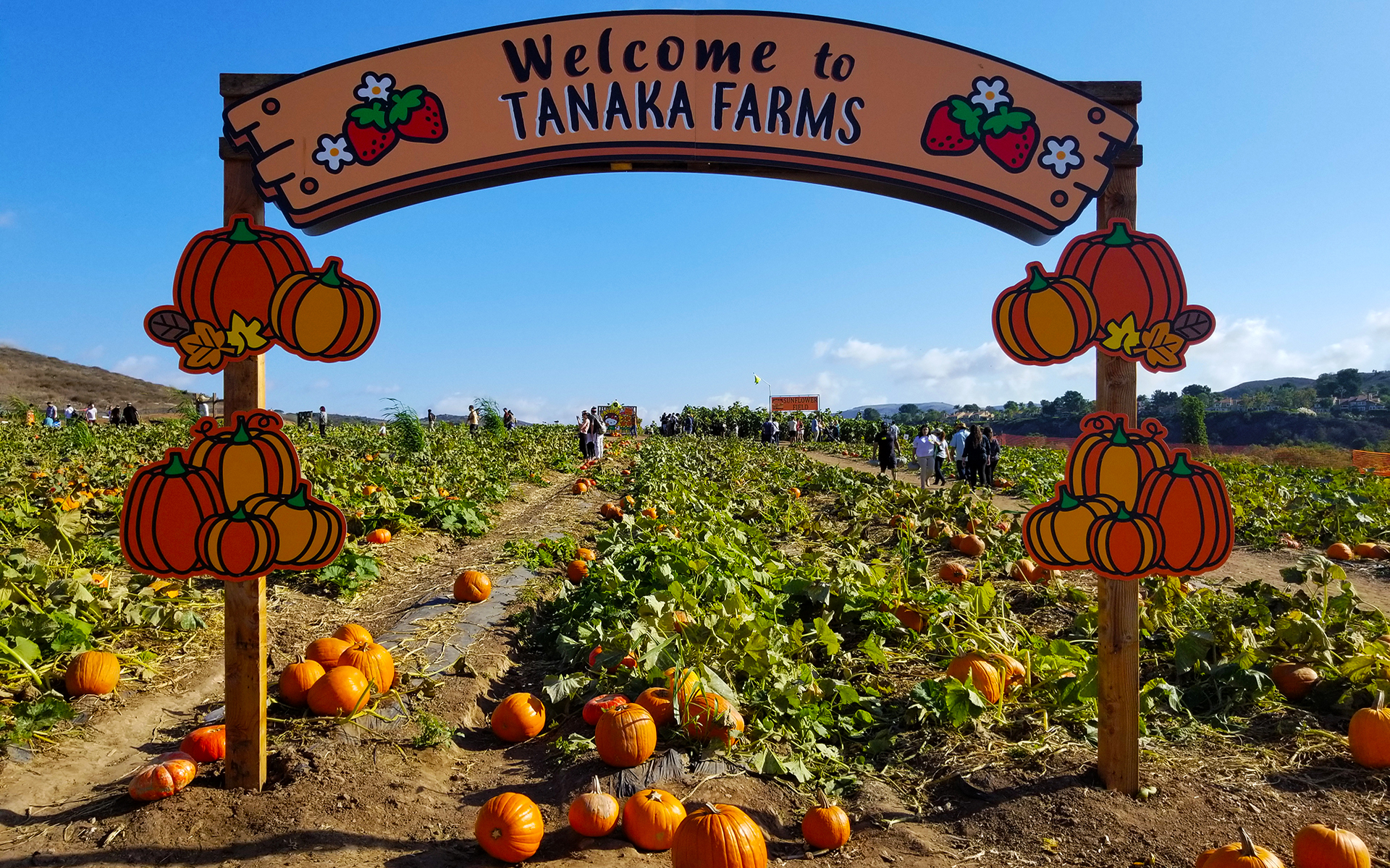 Image result for tanaka farms
