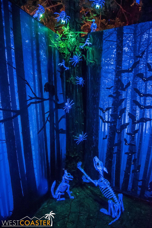 C-DeadwoodForest-0001.jpg