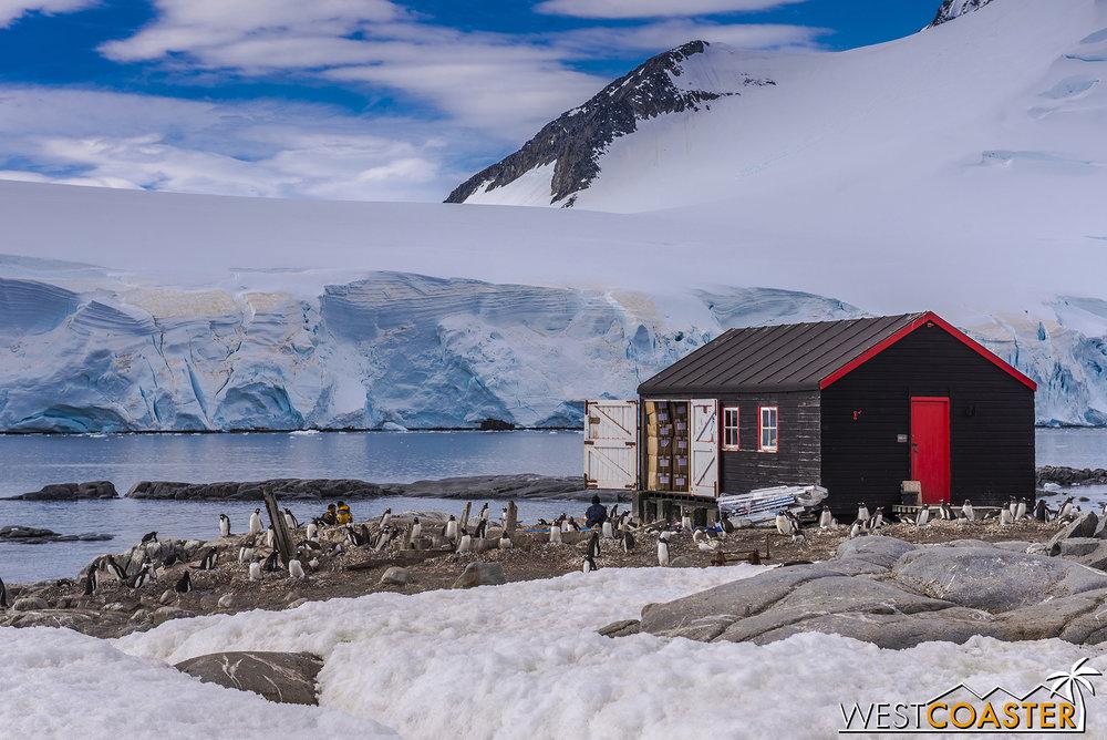 Antarctica-19_0103-0005.jpg