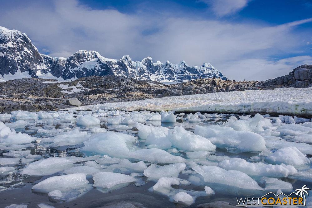 Antarctica-19_0103-0046.jpg
