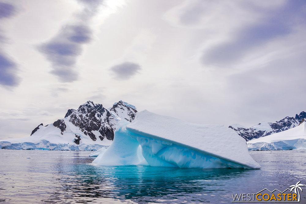Antarctica-19_0109-0018.jpg