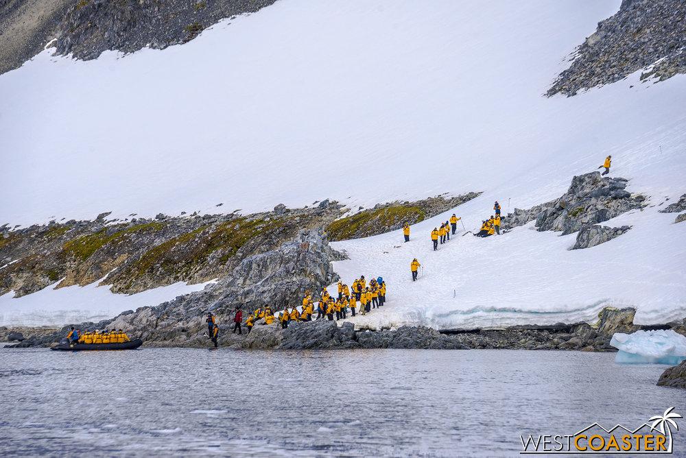 Antarctica-19_0109-0032.jpg