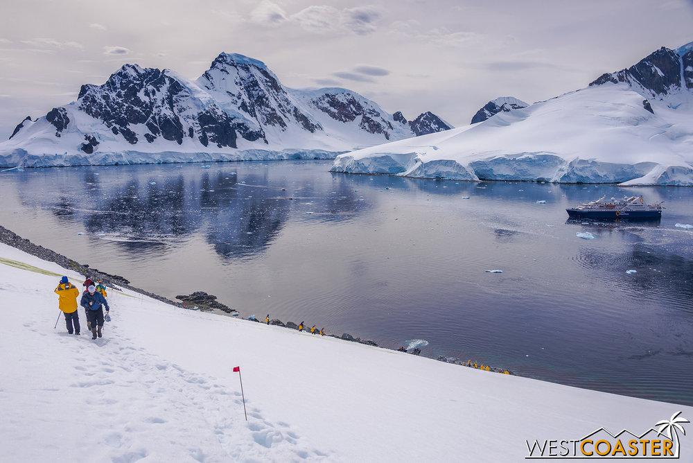 Antarctica-19_0109-0034.jpg