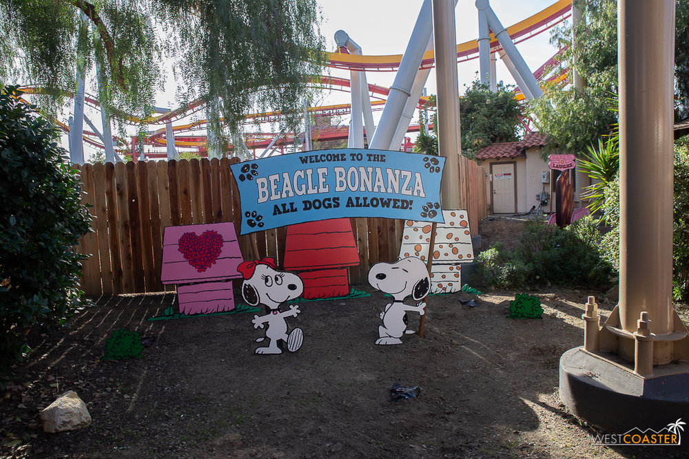 KBF Peanuts Celebration-96.jpg
