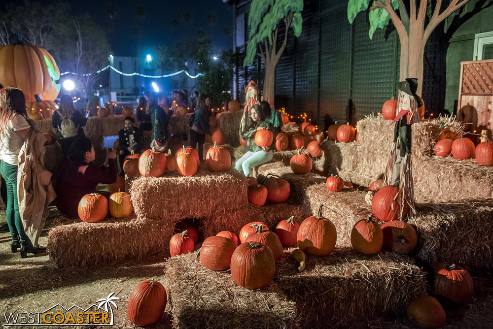 There's a small pumpkin patch of sorts that seems more of a sitting area than a place to explore. This was also one of the few areas with actual pumpkins.
