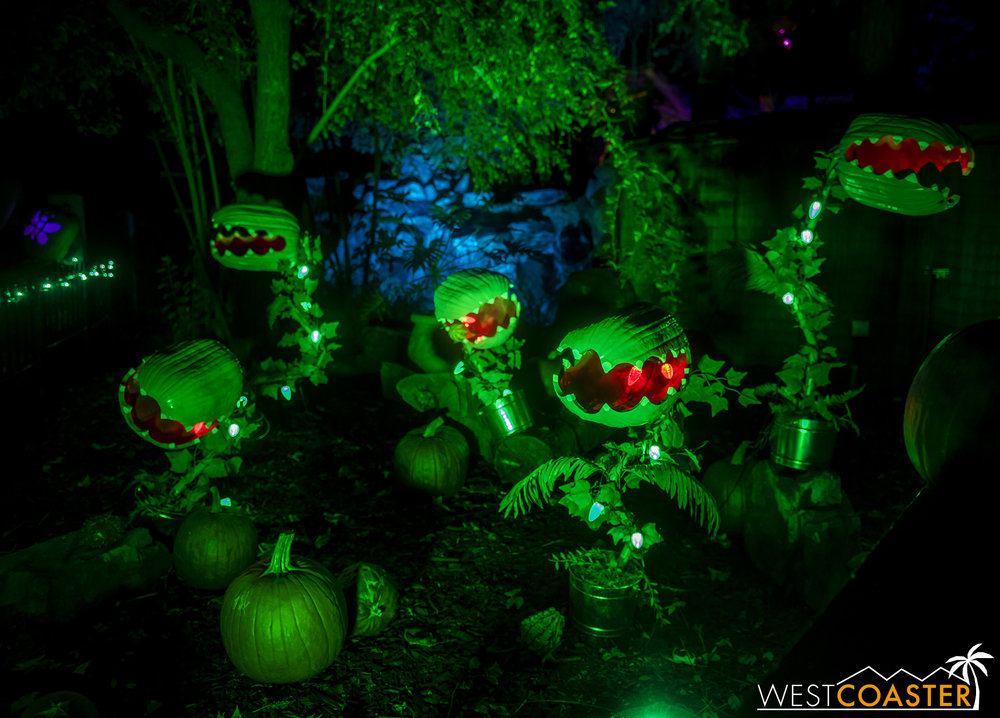 These Pumpkin Audreys were one of the best compositions of the attraction.