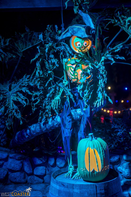 The skeletal pirate pumpkins were pretty cute!