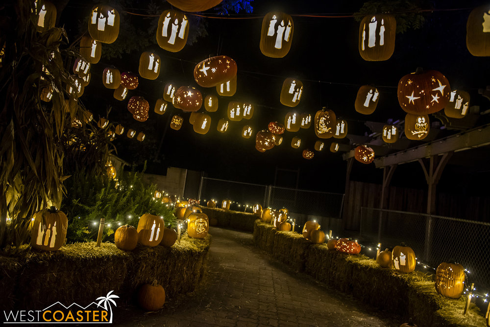 PumpkinNights-19_0308-C-PumpkinWalk-0013.jpg