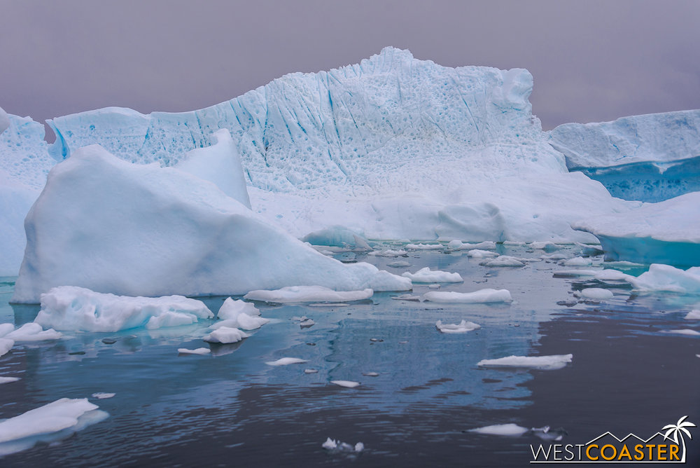 The still forms of icebergs in Pléneau Bay.