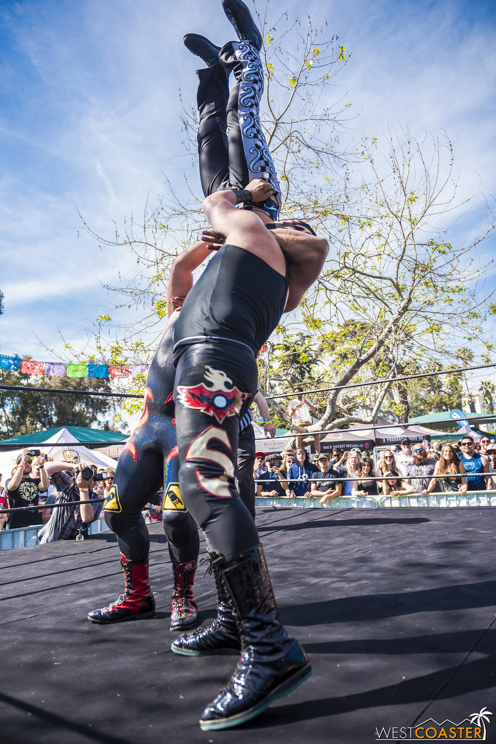 Check out this tag team vertical suplex.