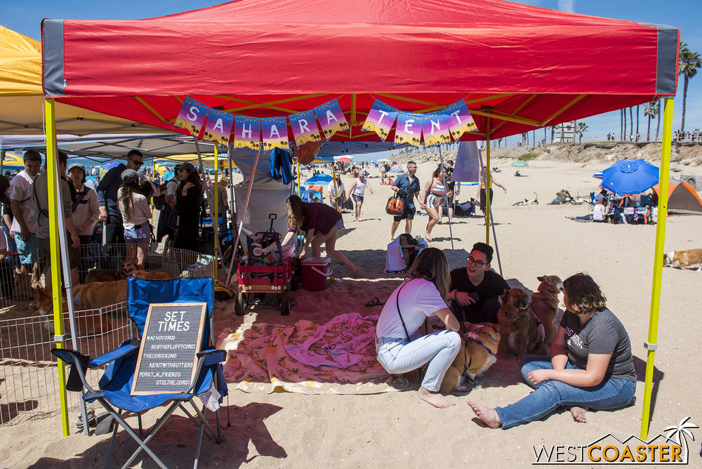 Corgi Beach Day's Coachella theme even spawned its own Sahara Tent! But with much less oontz oontz.