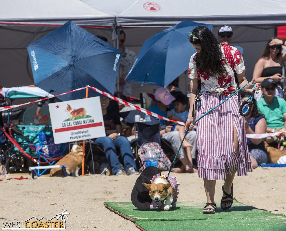 CorgiBeachDay-19_0415-C-CostumeContests-0004.jpg