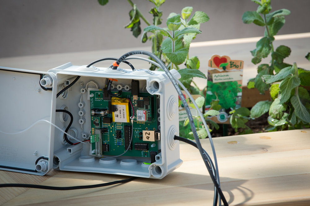 connectedgarden-auf-dem-t-center-dach_33658861803_o.jpg