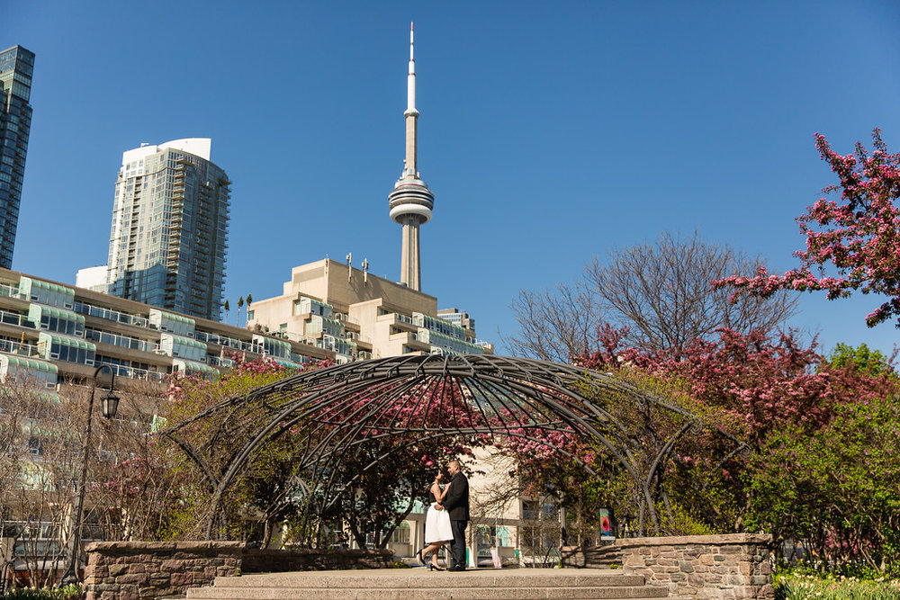 Impressions by Annuj - Toronto Photography Locations - Toronto Music Garden - 1.jpg