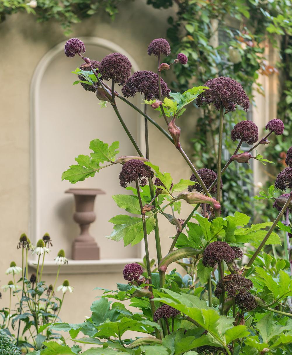FORMAL GARDEN — Nat Rea Photography on formal flower gardens, formal tropical gardens, formal victorian gardens,