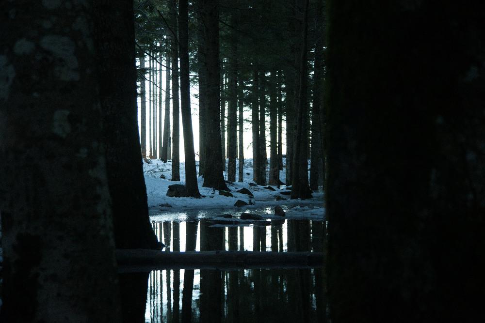 mygravity_lago-44.jpg