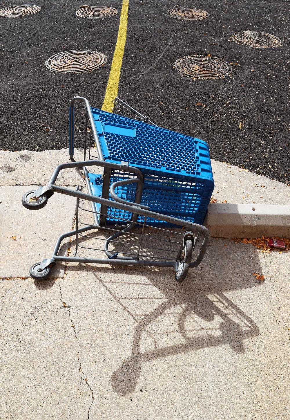 Blue Cart 2016