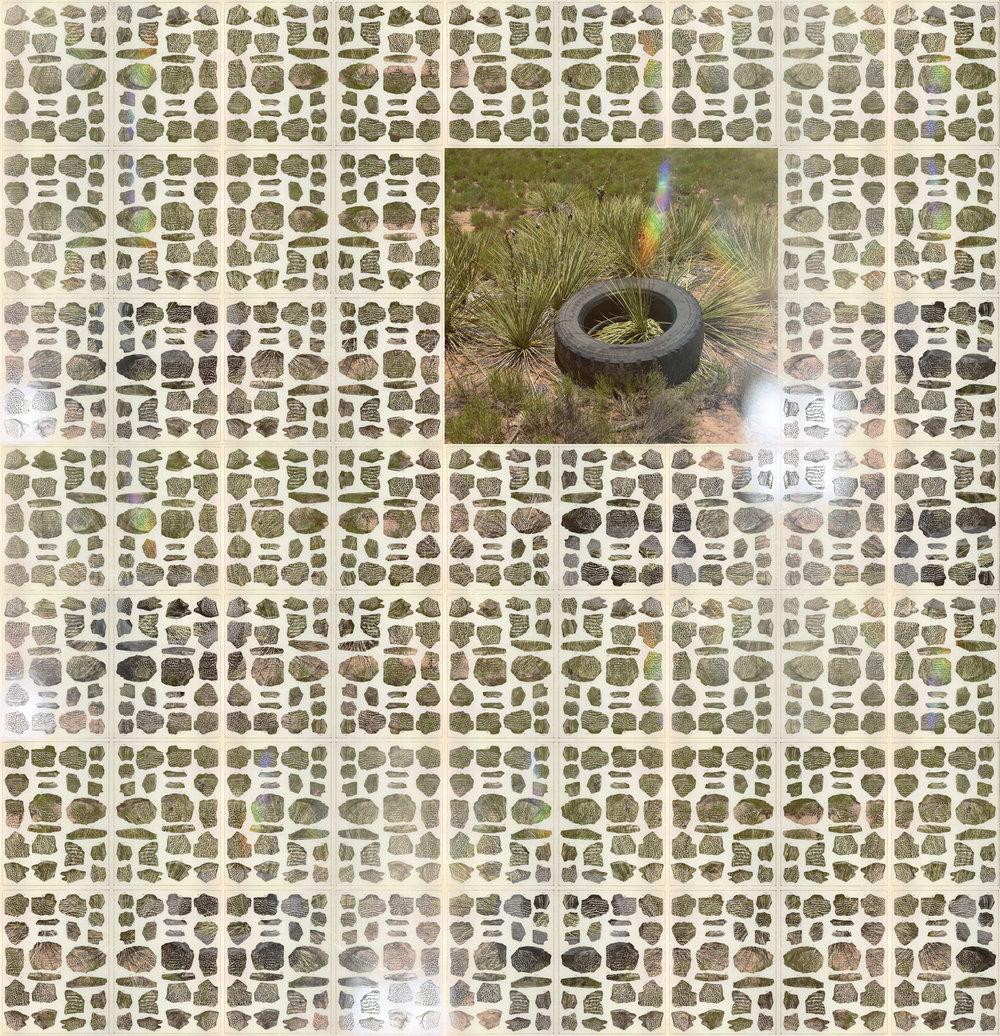 Tire-Fossil-Pattern-web.jpg
